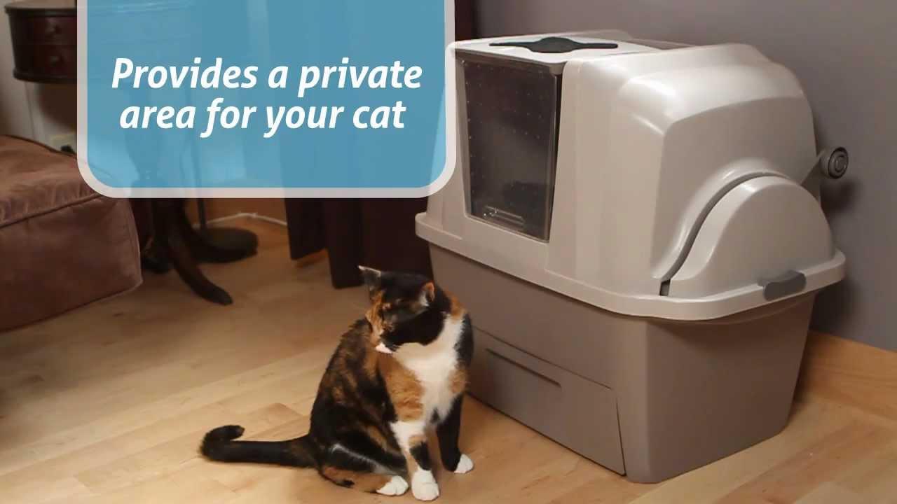 catit design smartsift say goodbye to your litter scooper