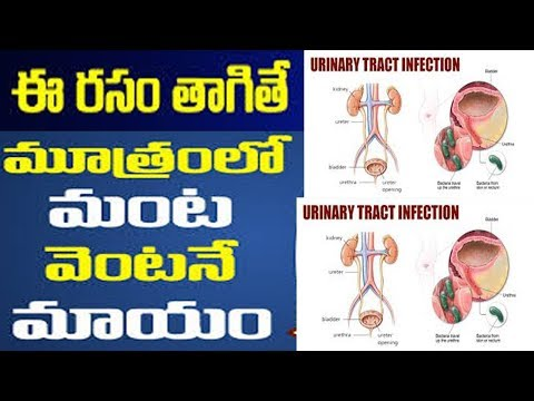 Cranberry juice for UTIs treatment- urinary tract infections home relief మూత్రంలో మంట, చురుకు