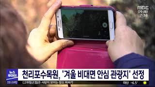 태안 천리포수목원, 겨울 비대면 안심 관광지 선정/대전…