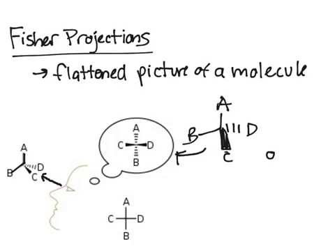 Fisher Projections