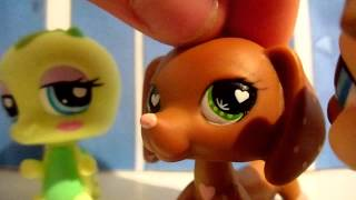 Littlest Pet Shop : Beautiful (Episode #8 : Kelsey)