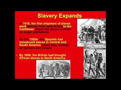 Latin American Slave Trade
