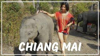 Exploring Chiang Mai ( เชียงใหม่ ) Thailand