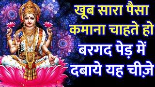 रविवार को बरगद पर चढ़ा दे यह चीज़े दौड़ी आएंगी माँ लक्ष्मी