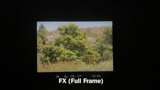 FX vs DX | Viewfinder Comparison
