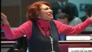 Sesión 325 del Pleno Continuación (26-01-2017)