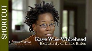 Kaye Whitehead on Exclusivity of Black Elites