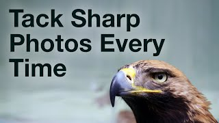 Taking Tack Sharp Photos Every Time With 4 Simple Photography Tricks