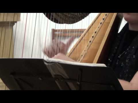 Соната для арфы Антонио Розетти. Англиканская церковь Святого Андрея (Москва, 21.7.2013)