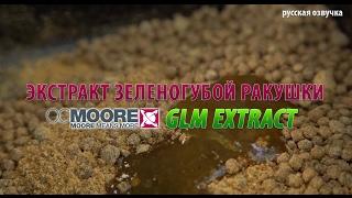 Экстракт зеленогубой ракушки CCMoore GLM Extract (русская озвучка)
