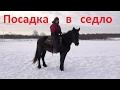 Учим лошадь стоять при посадке и спешивании
