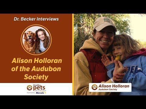Dr. Becker Interviews Alison Holloran