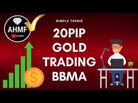 cara membuat forex trading 20 pips sehari