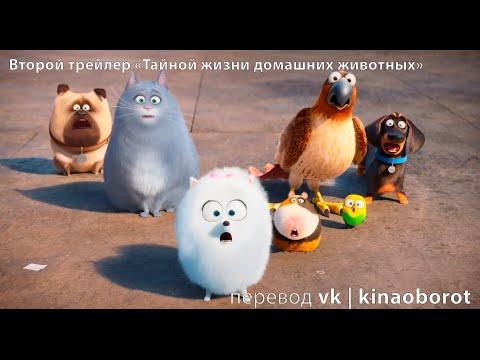 Мультфильмы про животных смотреть онлайн