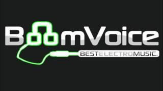 Martin Solveig vs. Steve Angello - Say Hello to Rave n Roll (JB Mashup)BoomVoice - BEM edit