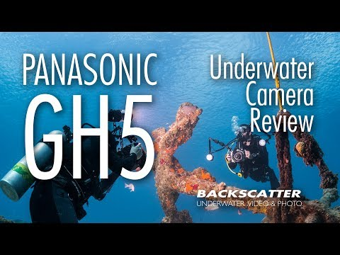 Panasonic GH5 - Underwater Camera Review