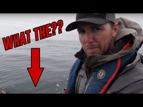 What The HECK Did Cameron Black Just CATCH??!! | Addicted Life Ep. #39