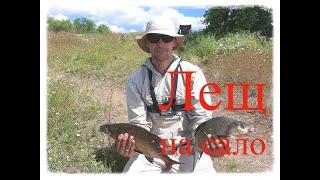 Ловля ЛЕЩА на САЛО Рыбалка на Александровском водохранилище с ночёвкой Ловля леща на фидер и донки