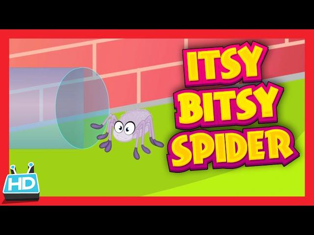 ITSY BITSY SPIDER Nursery Rhyme with Lyrics
