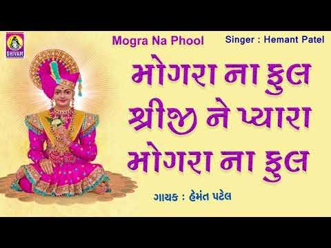 Mogra Na Phool Sakhi Mogra Na | Swaminarayan Bhajan Dhun | Swaminarayan Bhajan Kirtan | Swaminarayan