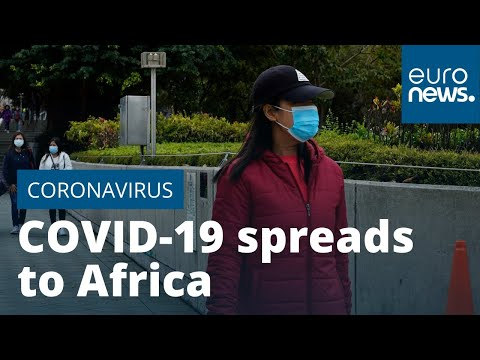 COVID-19 coronavirus spreads to Africa as Egypt confirms first case