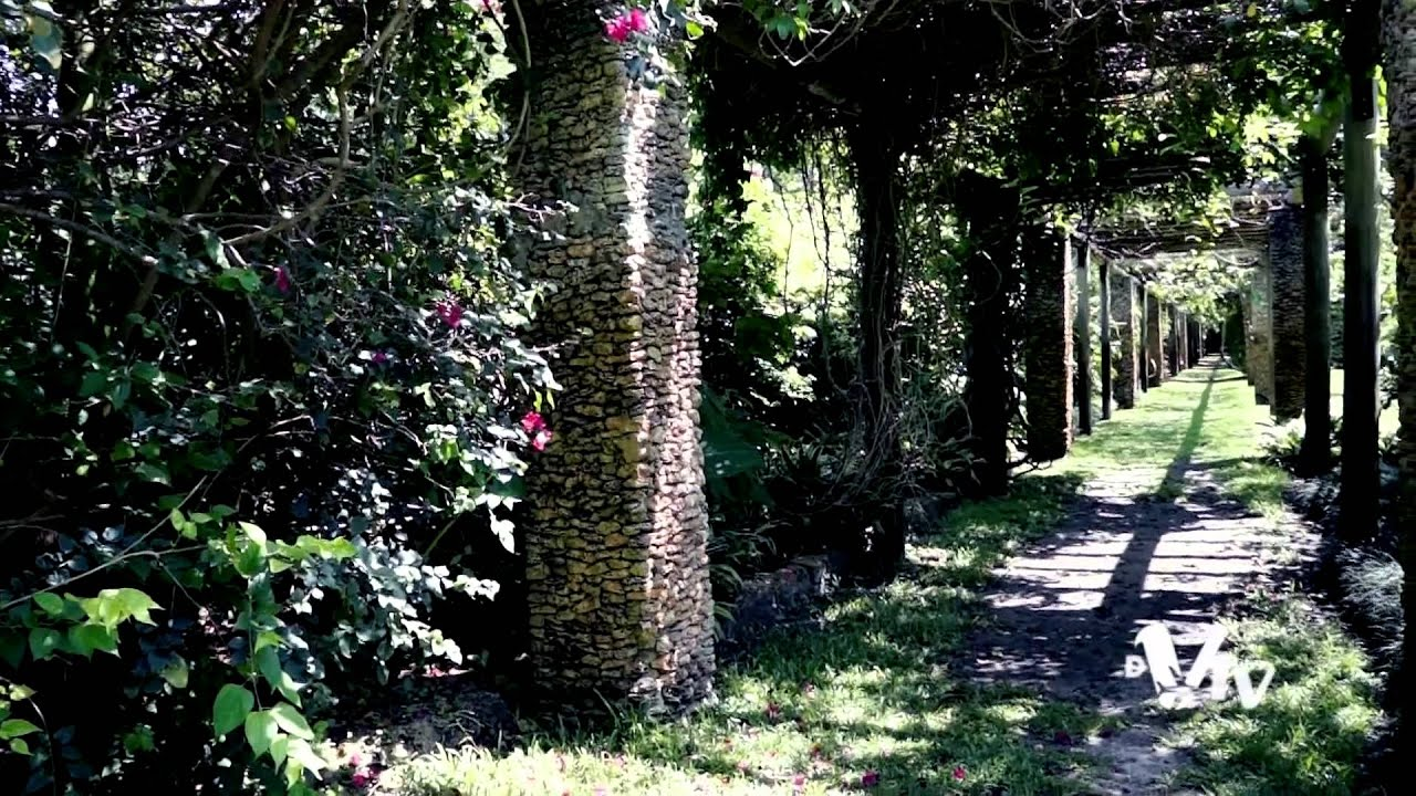 Fairchild tropical botanic garden miami florida youtube - Fairchild tropical botanic garden ...