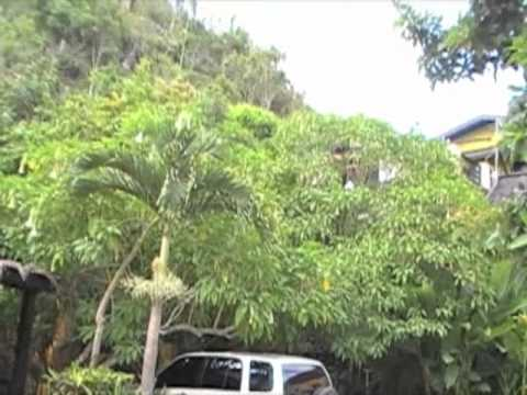 Jamaica BOB MARLEY NINE MILES childhood home