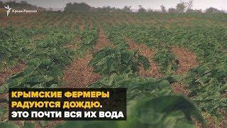 Крымские фермеры радуются дождю. Это почти вся их вода