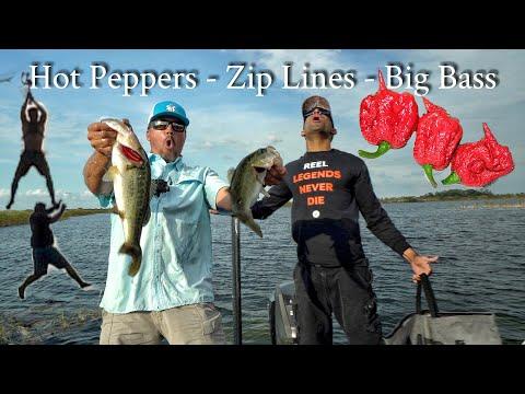 Carolina Reaper Bass Challenge  Ft. Catch Em All Fishing