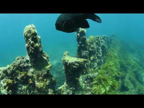 Sub Sea Explorer coral & shipwrecks tour, Rottnest Island