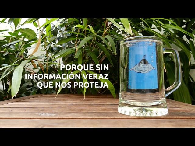 #SaqueoDelAgua El libro sobre la trama de corrupción del Canal de Isabel II