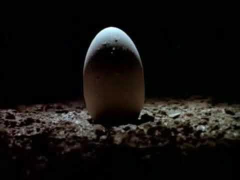 Alien (1979) Trailer Subtitulado