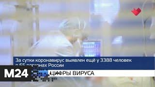 """""""Москва и мир"""": цифры вируса и потери от коронавируса - Москва 24"""