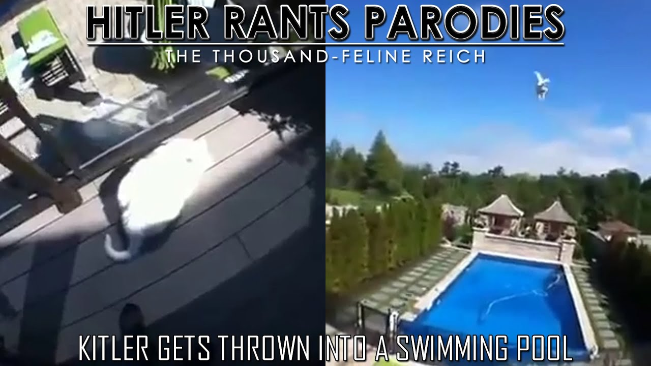 Kitler gets thrown into a swimming pool