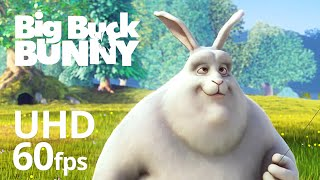 Big Buck Bunny mit 60 fps 4K - Offizielle Blender Foundation Short Film