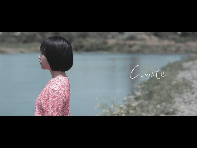 Siamese Cats - Coyote (Official Video) 2017 シャムキャッツ - Coyote