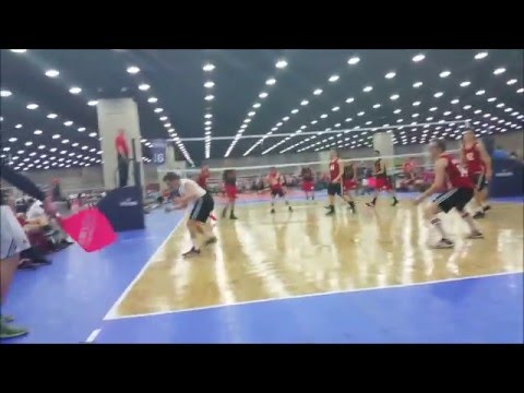 Maryland Men's Volleyball: Nationals 2016