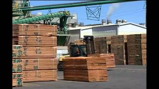 Wood in high demand, workers needed
