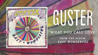 Watch Guster What You Call Love video