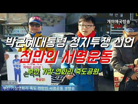 ★개미애국TV★ (11/19) 부산 기장 연화리 죽도공원 천만인 서명운동