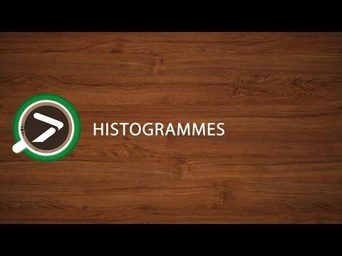 #04 Histogrammes dans Excel avec XLSTAT