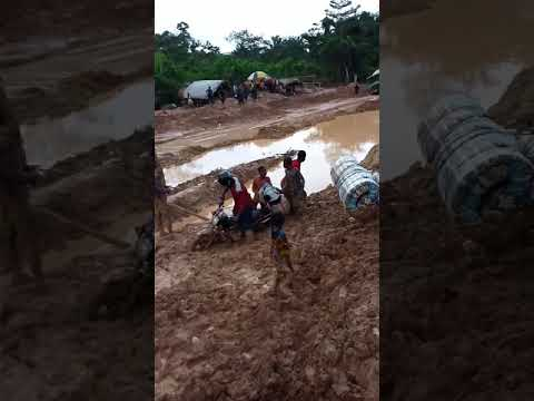 THE EMERGING CAMEROON OF PAUL BIYA. THE DAILY SUFFERING OF AMBAZONIANS