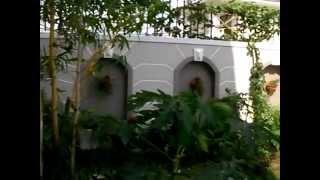 Biệt thự, villa, nhà Quận 2 bán