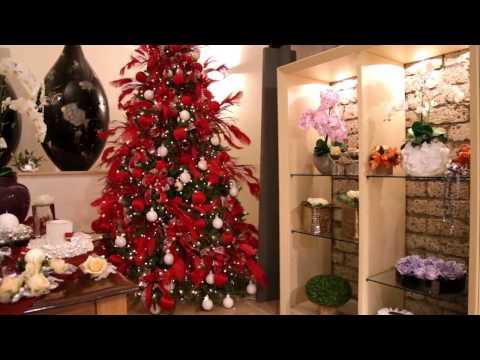 Carlo Civera - Christmas Gala 2013