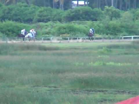 Guyana Cup Feature event