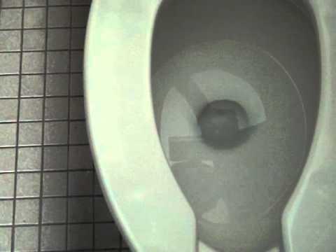 S Kohler Brooklands Toilet On Flush Valve Moms Pov
