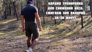 Сжечь 500 КАЛОРИЙ за 30 МИНУТ Кардио тренировка дома и на улице Упражнения для сжигания жира
