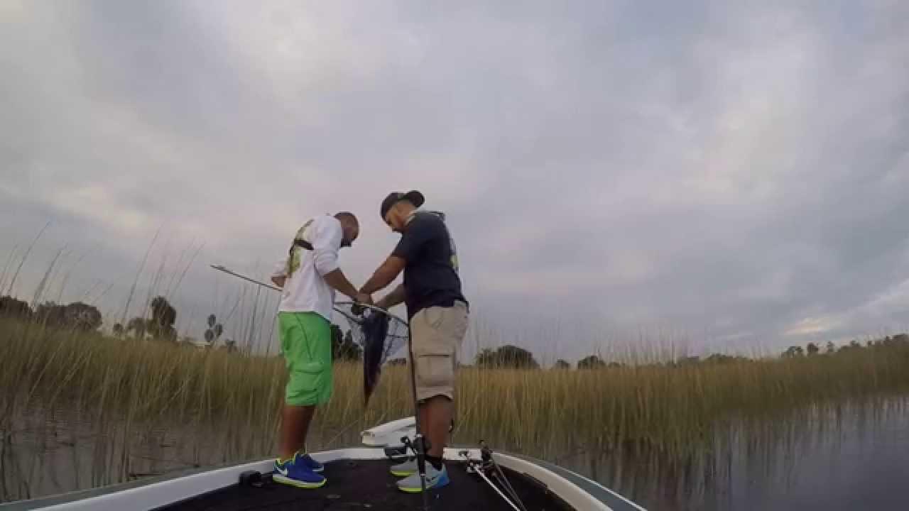 Fishing lake hamilton bass youtube for Lake hamilton fishing report