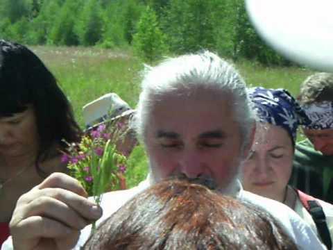 Лечебные травы при заболевании мочевого пузыря » Ваш