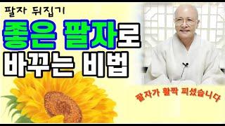 [팔자 뒤집지] 좋은 팔자로 바꾸는 비법#불교#생활#법문#[보현스님TV ]